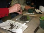 Don't miss our 1st workshop of the season…Seed-Sowing