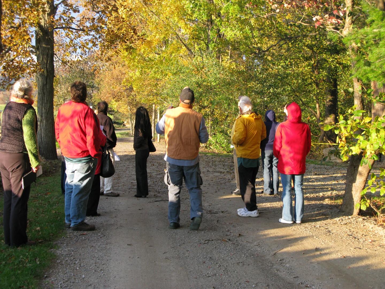 Fall foliage evening walk