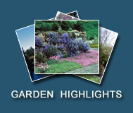 Garden Highlights Photo Gallery
